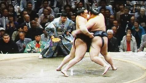 201605020 大相撲夏場所 052-2