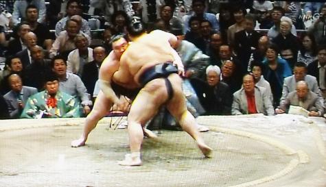 201605020 大相撲夏場所 061-2