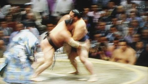 201605020 大相撲夏場所 097-2