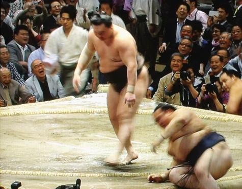 201605020 大相撲夏場所 113-3