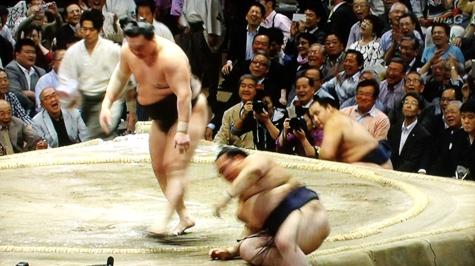 201605020 大相撲夏場所 113-1