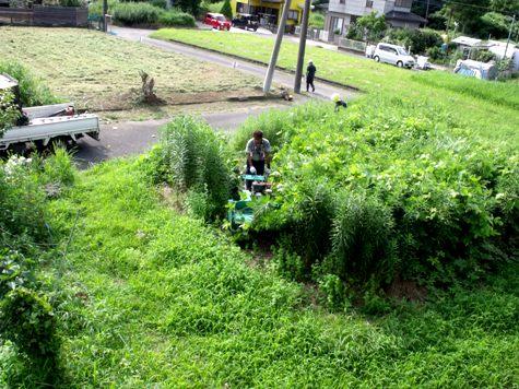 20160725 プロの草刈り 003-2