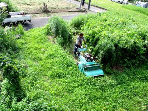 20160725 プロの草刈り 004-2
