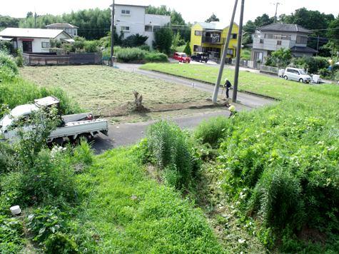 20160725 プロの草刈り 006-2