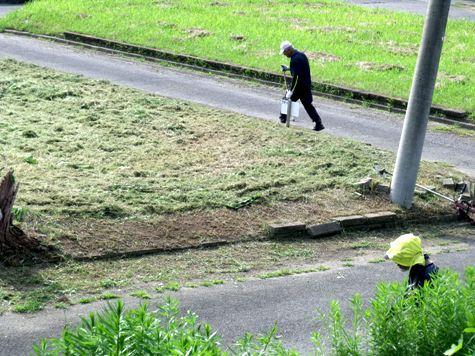 20160725 プロの草刈り 007-2