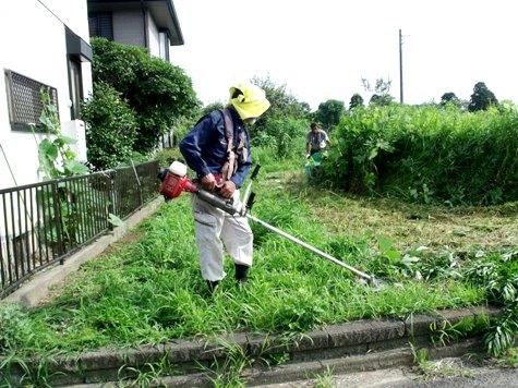 20160725 プロの草刈り 022-2