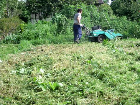 20160725 プロの草刈り 028-2