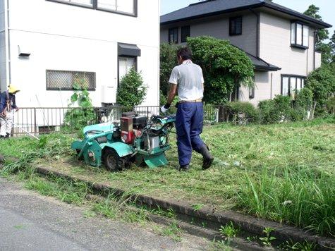 20160725 プロの草刈り 029-2
