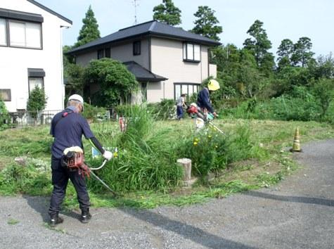 20160725 プロの草刈り 034-2