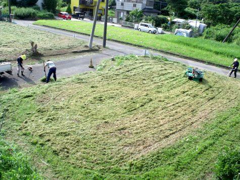 20160725 プロの草刈り 040-2
