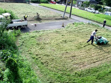 20160725 プロの草刈り 037-2