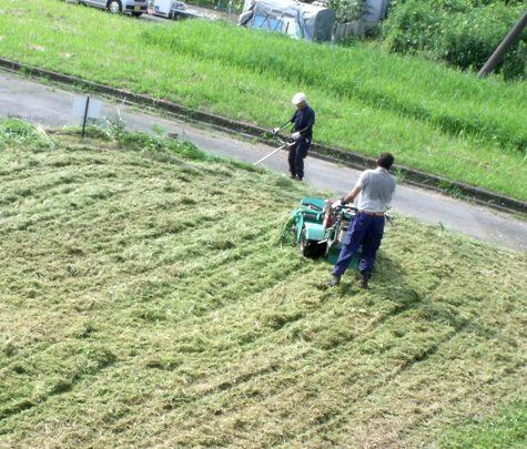 20160725 プロの草刈り 038-2