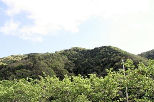 日本海側から見た朝日山