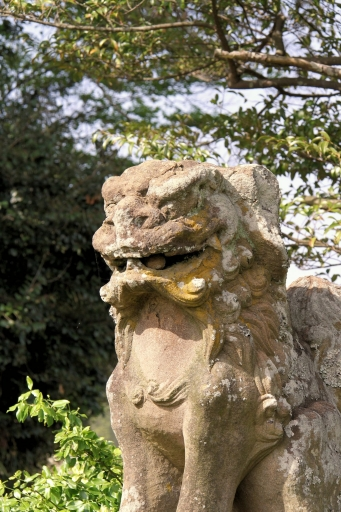 長見神社の狛ワンコ