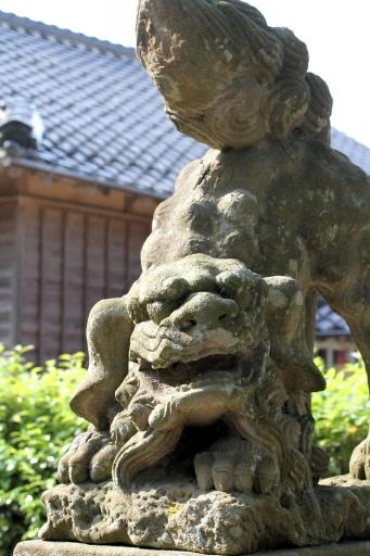 出雲路幸神社の狛ワンコ