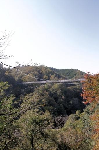 鬼舌震の恋吊り橋