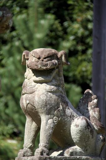 静間神社の狛わんこ
