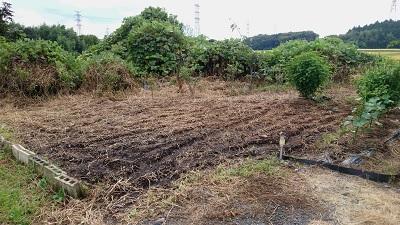 20160911畑