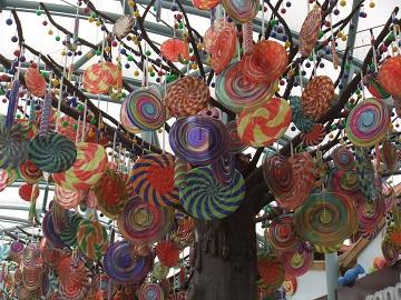 キャンデイの木