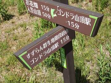入笠湿原1
