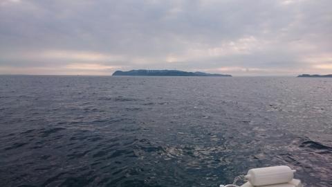 鯛ラバ・ジギング1