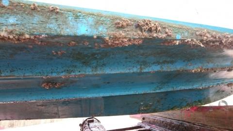 船底塗装3