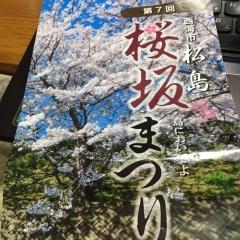 2016松島さくら坂まつり