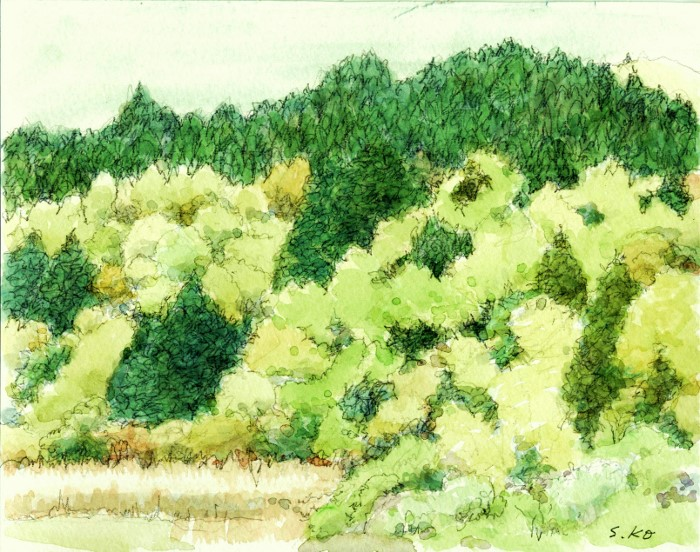 猪名川 春の里山 (700x552)