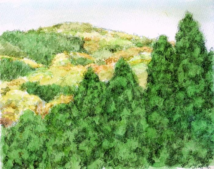 春の山 (700x552)