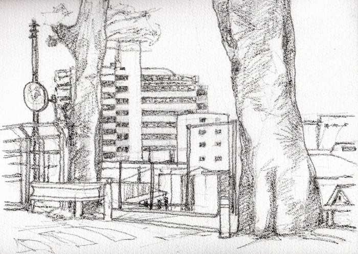 香里園の古木 デッサン (700x497)