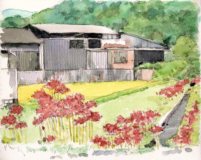 彼岸花の咲く風景 F3 (700x557)