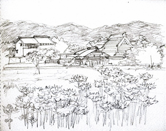 亀岡の彼岸花 デッサン F3 (700x555)