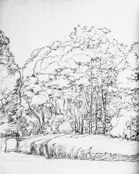 寝屋川公園の秋 デッサン (478x600)