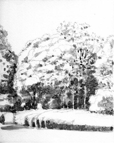寝屋川公園の秋 グリザイユ (476x600)