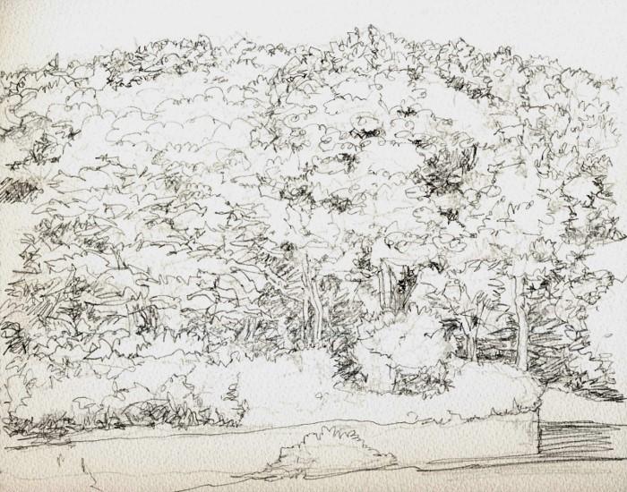 公園の万葉 デッサン (700x550)