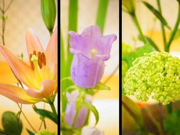 2016年4月の花2