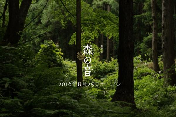 森の音壁紙