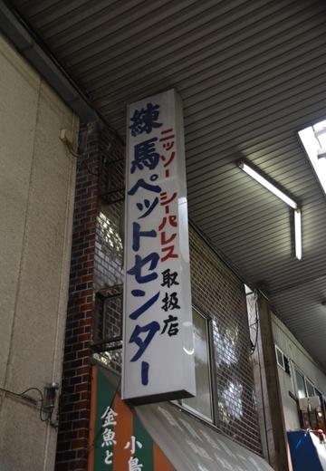 160529-143726-上板橋・東武練馬 (319)_R