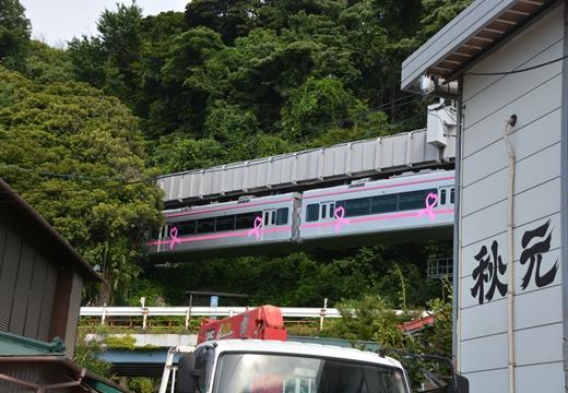 160703-145025-江ノ島鎌倉界隈 (105)_R