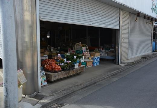 160703-145806-江ノ島鎌倉界隈 (130)_R