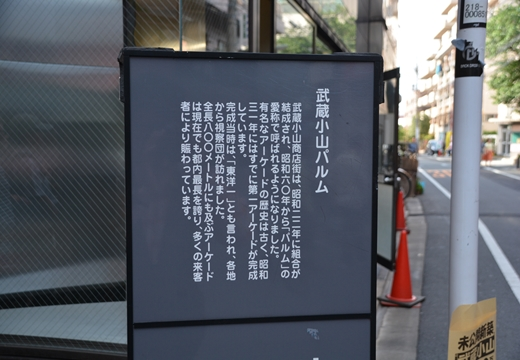 160507-153916-武蔵小山 戸越銀座 (213)_R
