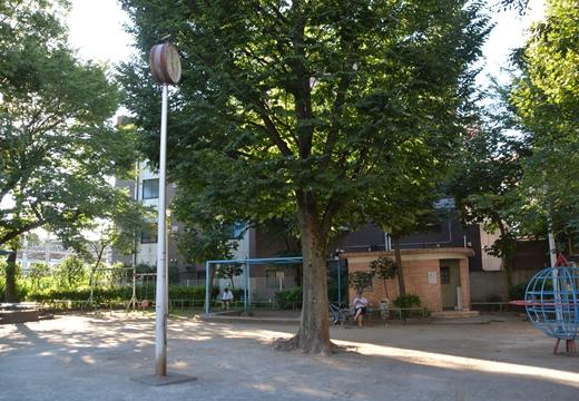 160730-164749-根岸・うぐいす・新橋・有楽町 (247)_R