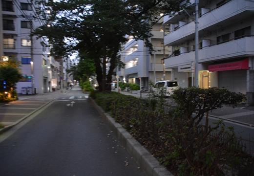 160813-182753-横浜201608 (369)_R