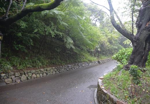 160924-153938-音羽御殿・護国寺 (313)_R