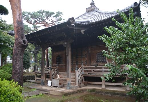 160924-162534-音羽御殿・護国寺 (399)_R