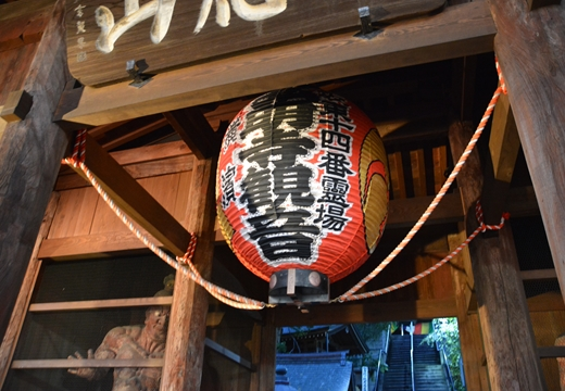 161008-172030-杉田・弘明寺 (219)_R