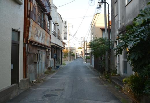 161015-162349-野田20161015 (709)_R