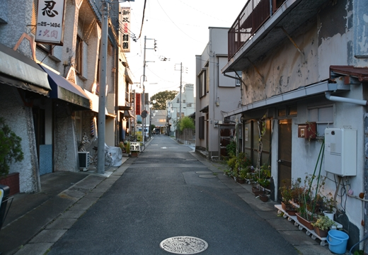161015-162602-野田20161015 (715)_R