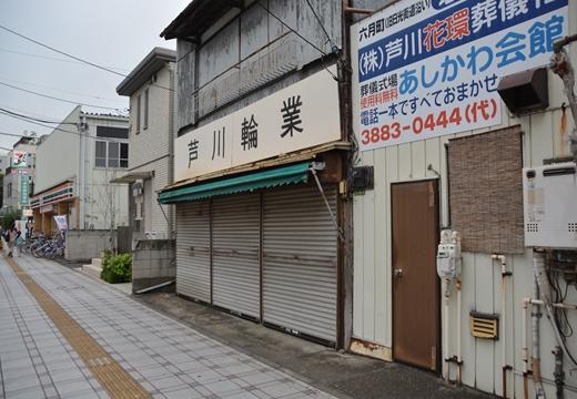 161022-153531-梅嶋201610 (61)_R