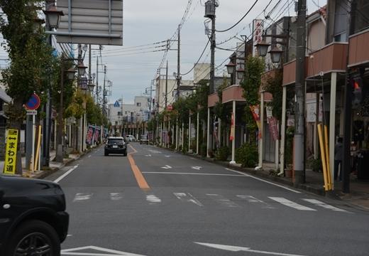 161102-143710-行田 埼玉(さきたま)と足袋蔵三昧 (264)_R